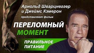 Переломный Момент (Меняющие Игру). фильм о веганах-спортсменах. Арнольд Шварцнеггер и Джеймс Кэмерон
