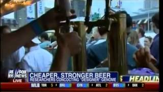 Beer Money   Cheaper, Stronger Beer!   Researchers Concocting Designer Genome