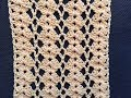 Crochet Lace Shell Stitch Tutorial~ Great for Blouse, Summer Scarf