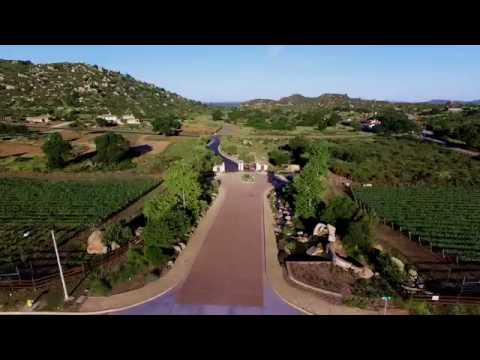 About Trevi Hills Winery in San Diego