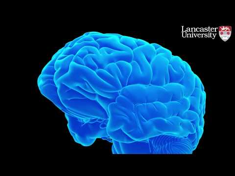 "Diabetes drug ""significantly reverses memory loss"" in mice with Alzheimer's"