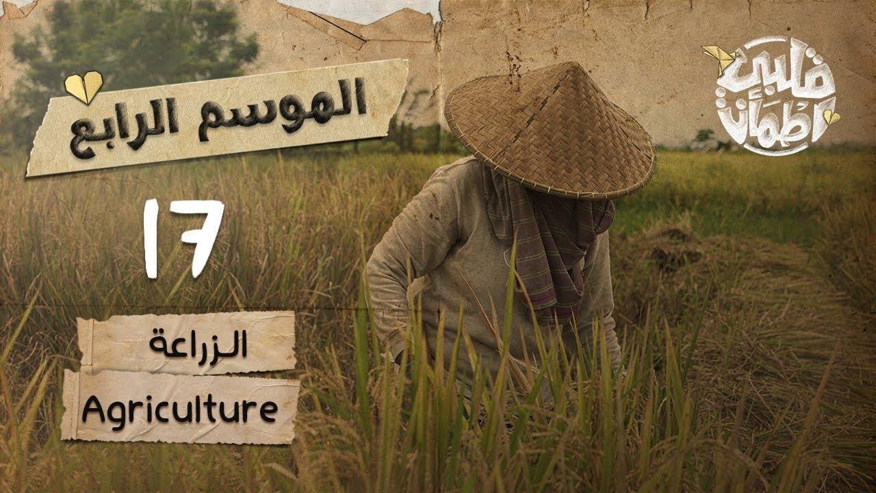 اطمأن قلبي 2021 الحلقه السابعه عشر 17 الزراعة