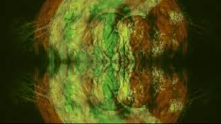X-Navi:Et - Orient: Melancholia