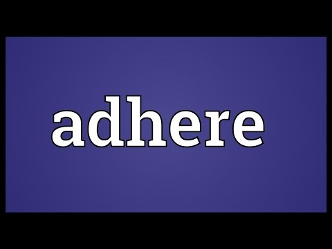 Adhere Meaning