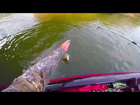 Fall fishing on the uper Ohio River