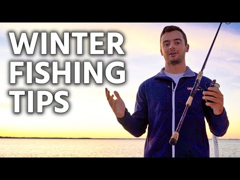 Tampa Bay Winter Fishing Tips: How To Catch An Inshore Slam (Just The Tips)