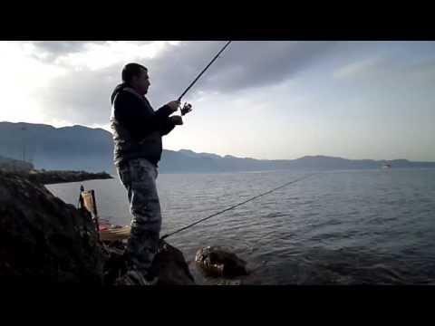 Match Fishing Club From Kalamata / Nasos Vougiouklis
