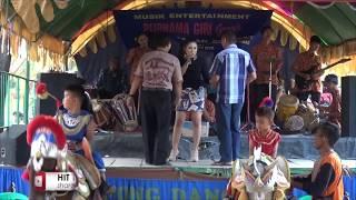 Tumbila di adu Boxer  @ Purnama giri @ Resepsi Khitanan David Syarif Pratama