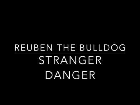 reuben-the-bulldog-stranger-danger