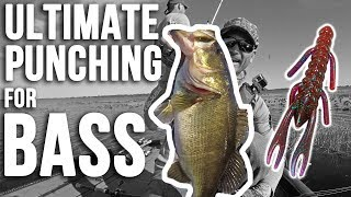 ULTIMATE Punching for Bass in Heavy Grass ~ Fishing Lake Kissimeee