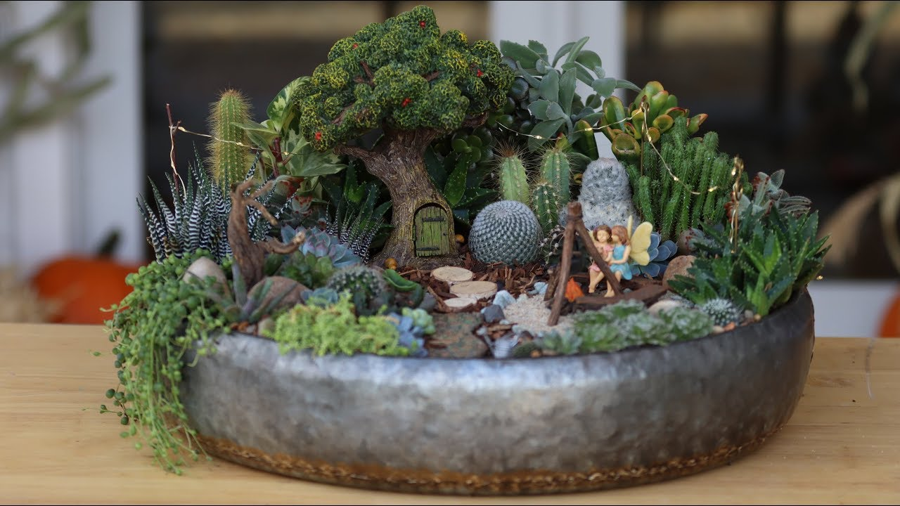 Succulent Treehouse Fairy Garden Garden Answer Youtube