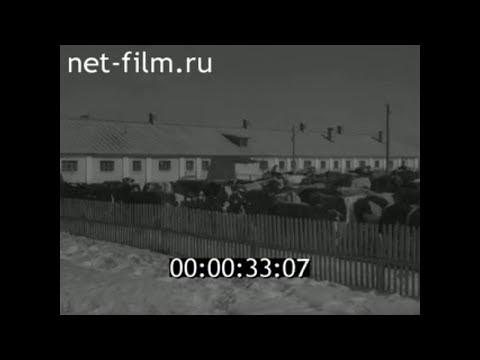 1959г. совхоз Коммунар Владимирская обл