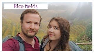 Rice fields | FPV China