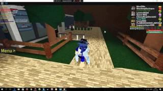 Projet Roblox: Pokemon ( EV Formation Shiny Greninja!