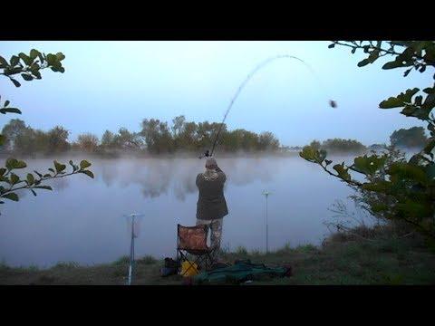 Майский лещ, фидерная ловля на нижней Москве реке.