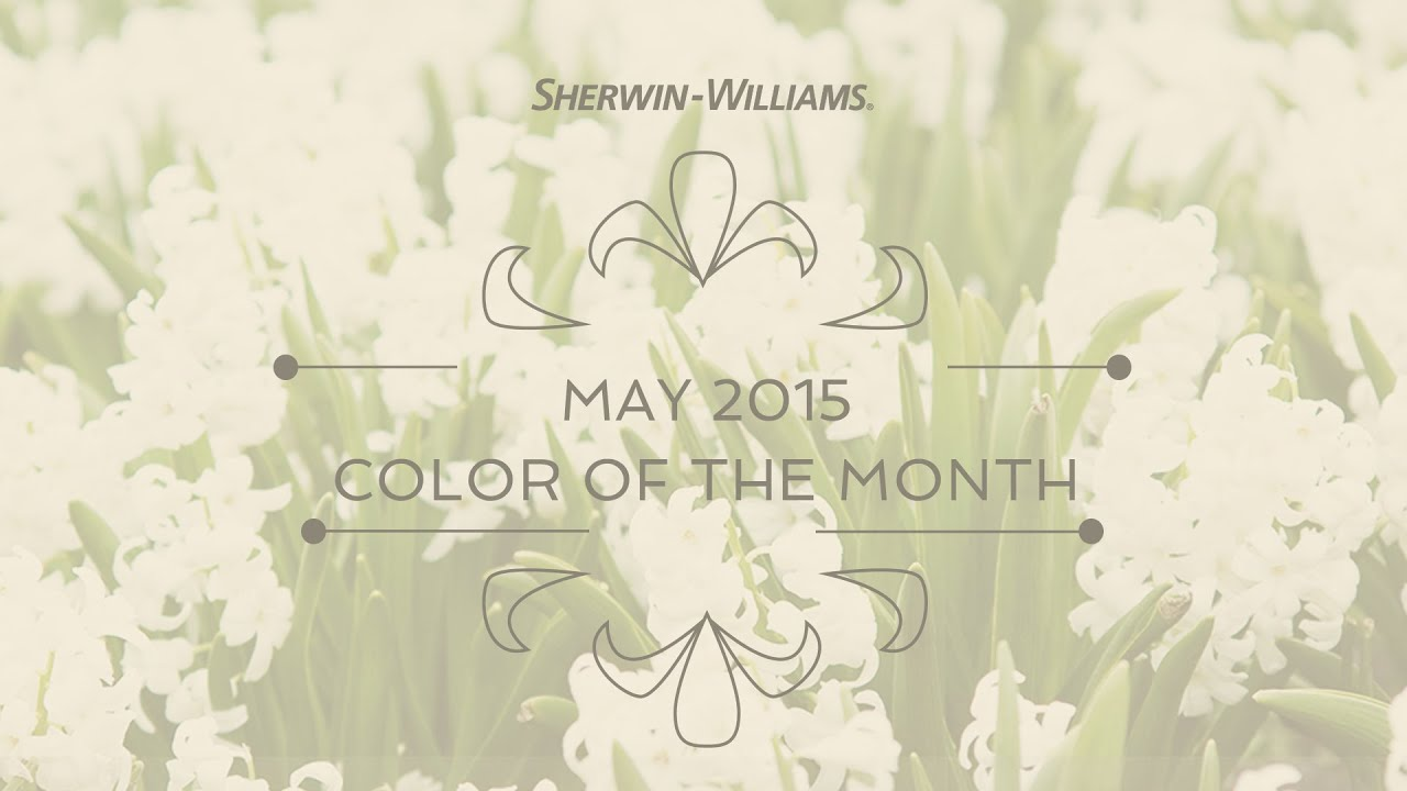 May 2015 Color of the Month White Hyacinth