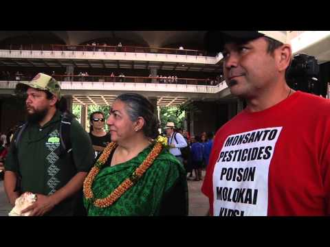 No GMO March & Rally at Hawaii State Capitol