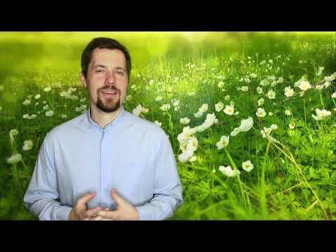 8. Dýchej Slovo - Body k meditaci na 2. neděli Velikonoční