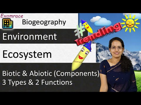 Ecosystem - Biotic & Abiotic (Components), 3 Types & 2 Functions (Part 1 of 4)