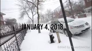 RESCUE OF A FERAL CAT DURING NYC SNOW STORM