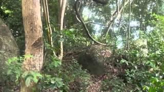видео Туры и отдых на Южно Китайском море от Coral Travel