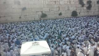1 יום ירושלים בכותל