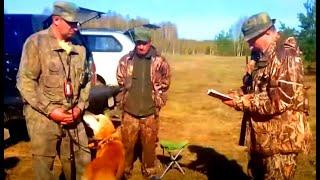 Р.Г. Гул ВПКОС 4016/13 вл. Тарасов С.П. г.Ступино 80 бал. дип.IIст.з/б.