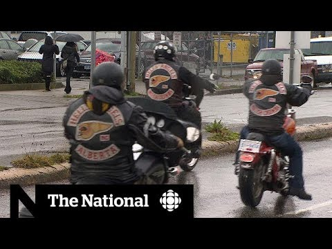 The National: Addressing Canada's guns and gang problem
