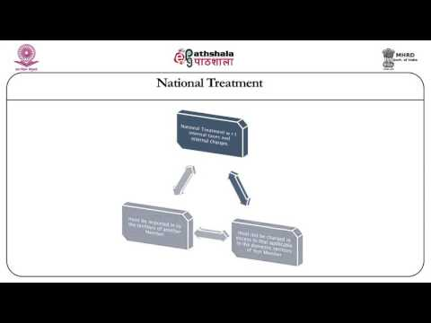 National treatment (LAW)