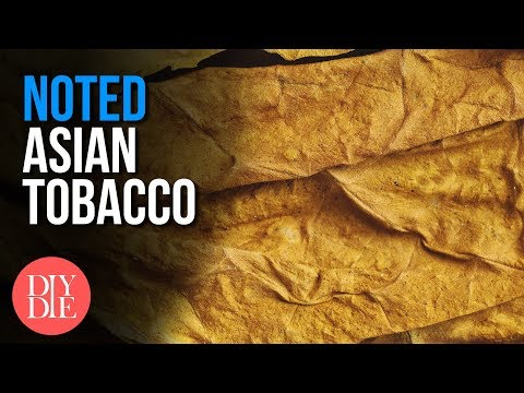 Asian Tobacco Ft. Fear, ChemicalBurnVictim [ Noted: Ep. 91 ]