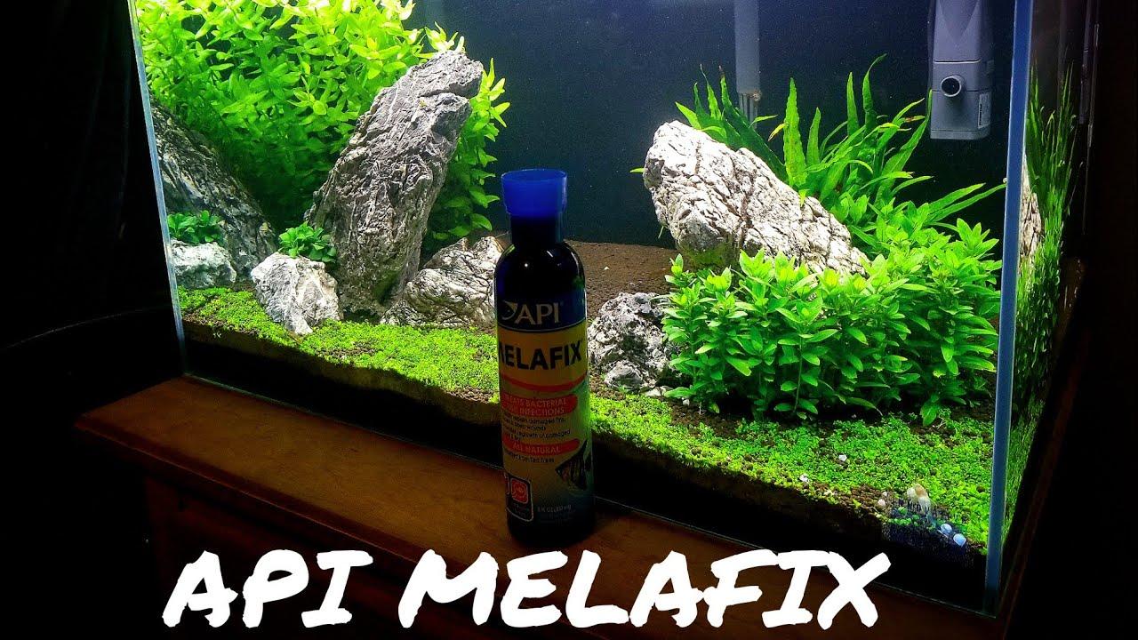 REVIEW: API MELAFIX