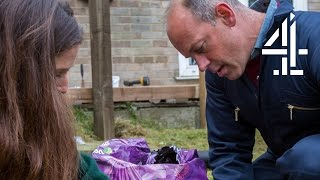 Small Garden, Big Ideas   Phil Spencer: Home Hero