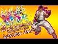 Aulas De Karate - Aula 05 - Kokutsu Dachi video