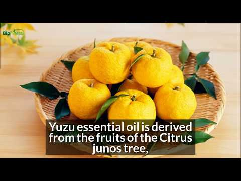 5-awesome-health-benefits-of-yuzu-essential-oil-(and-its-uses)