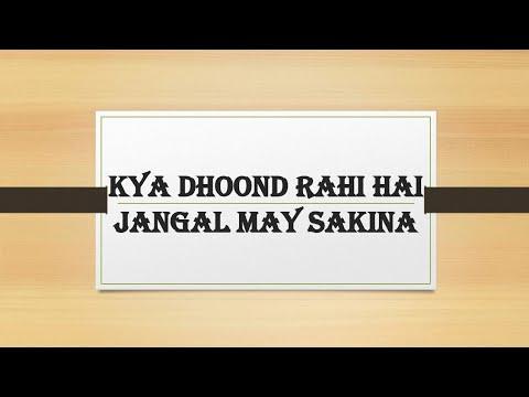 Download Kya dhoond rahi hai jangal may sakina nauha lyrics 2011/ Meesum Abbas