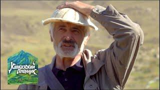 Кавказский пленник. Северная Осетия