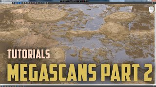Quixel Megascans. Megascans Studio. Analyze of tool and render it assets in Vray. Part 2