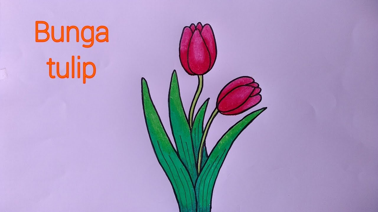 Cara Menggambar Bunga Yang Mudah Menggambar Bunga Tulip Youtube