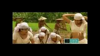 Thannakkum Tharo Thannakkum Tharo Breaking News Live Malayalam Movie Song