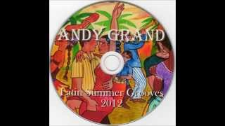 Andy Grand - Latin Summer Grooves 2012 (full mix)