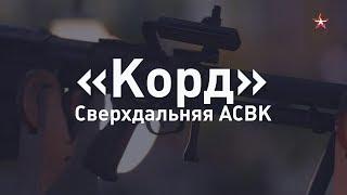 Сверхдальний выстрел: снайперская винтовка «Корд» за 60 секунд