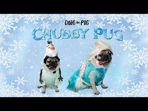 Chubby Pug (Frozen Parody)  Doug The Pug