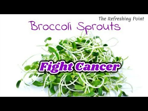 broccoli-sprouts-powerful-in-fighting-cancer-🌱-how-to-make-broccoli-sprouts---sulforaphane-benefits