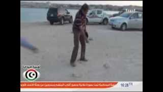 ظاهرة إنتشار القوارض في مدينة طبرق بشكل متزايد : تقرير محمد خالد - قناة ليبيا الأحرار