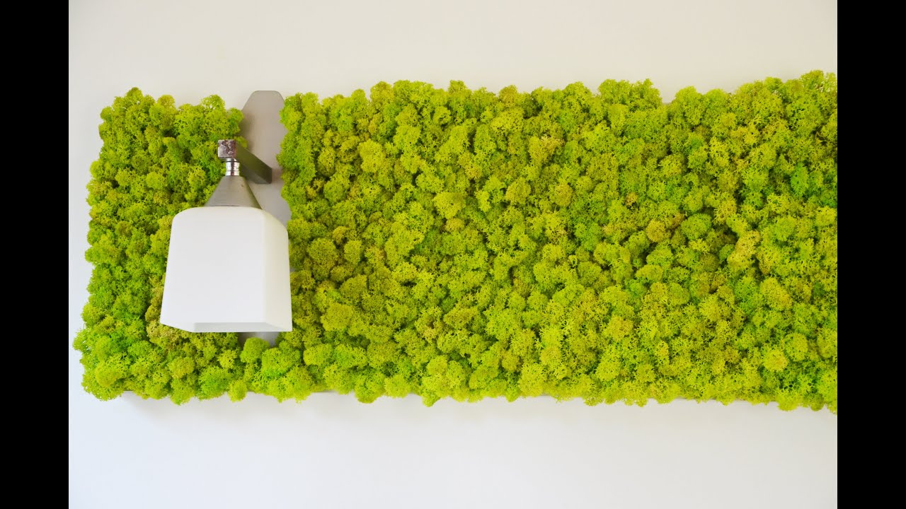 Green picture exclusive wall decoration