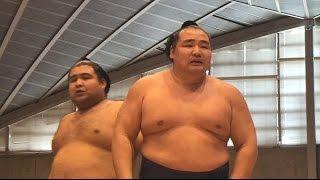 大相撲藤沢場所トーナメント一回戦、鶴竜が負けた直後の「あ~あ~」と...