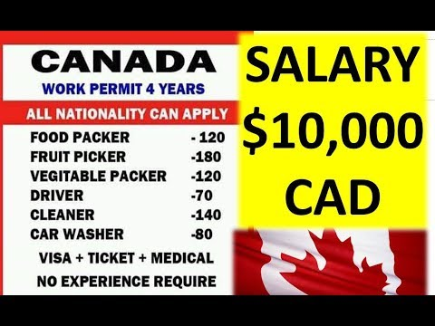 $10,000 CAD Salary In Canada 2019 ? Really