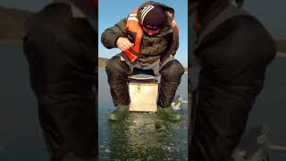 Зимняя Рыбалка на Окуня Поклёвка Perch Bite on IceFishing