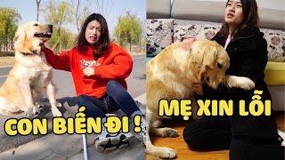 Dưa Hấu & Người Mẹ Mù | Mẹ Con Mình Sẽ Mãi Bên Nhau ❤️| Yêu Lu