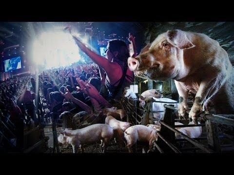 40 - Parresía: Rock in Rio e o orgulho dos porcos
